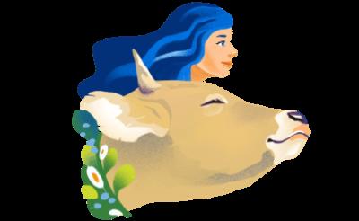 ilustratie in Sanctuar Nima contact